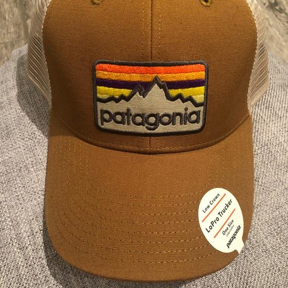 Patagonia LoPro Trucker Hat in light brown   tan 380189c0b42f